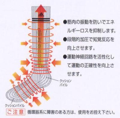 n4038-02.jpg